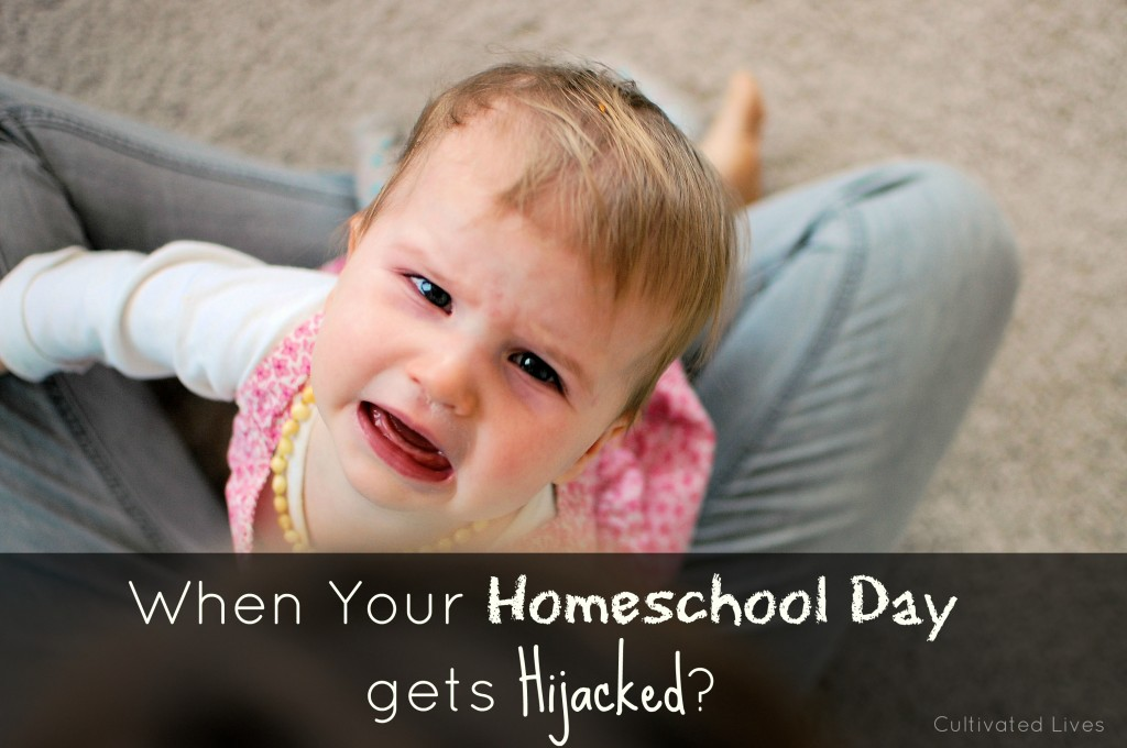 Finding perspective when your homeschool day gets hijacked...
