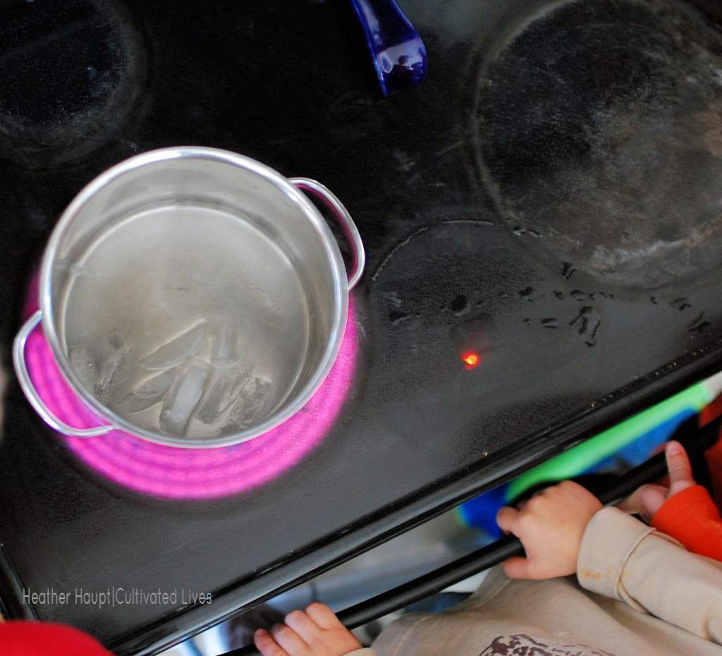 Incognito Testing: A Homeschool Mom's Secret Weapon