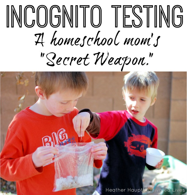 Incognito Testing: A Homeschool Mom's Secret Weapon - painless and FREE!