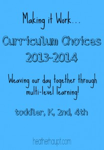 Embracing Multi-Level Learning: Curriculum Choices