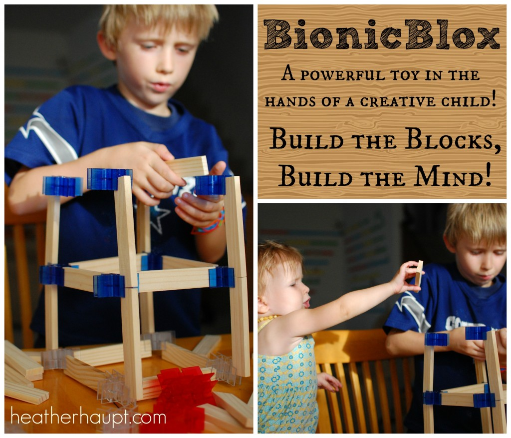 BionicBlox - Encouraging the architect, engineer and builder within!