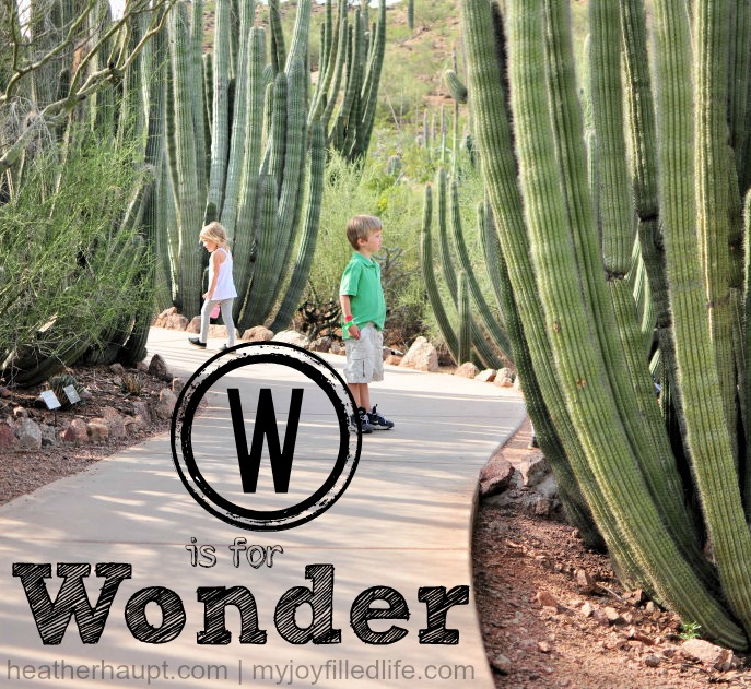 W is for Wonder | The ABC's of Homeschooling