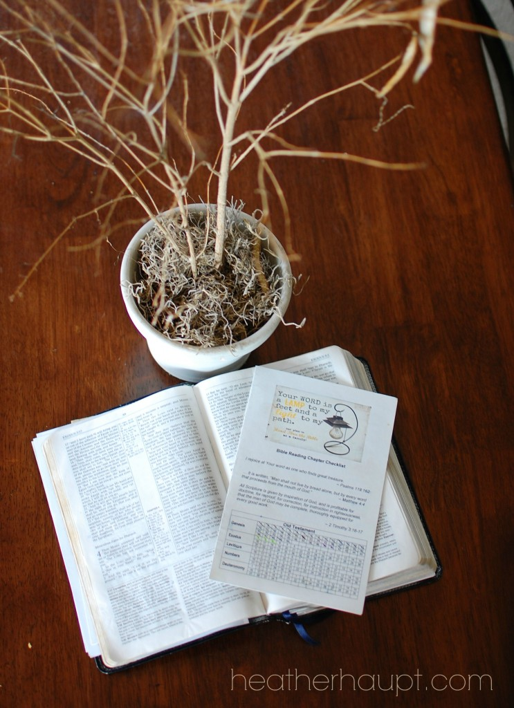 Free Printable for a Family Bible Reading Plan!