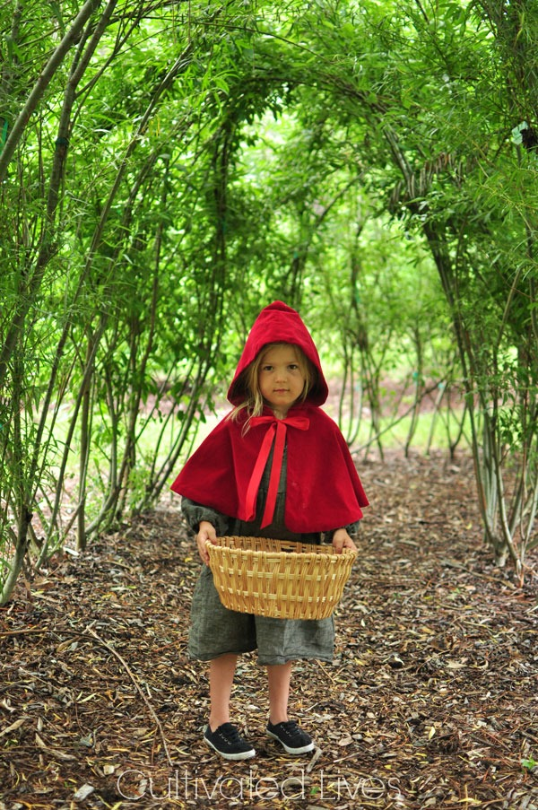 Gift Idea: Sew a Little Red Riding Hood and pair with a beautiful book.